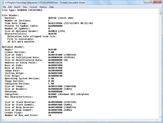 Portable Executable Viewer